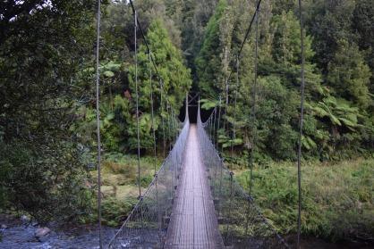 Woods of Coromandel