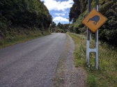 Kiwi On The Way.