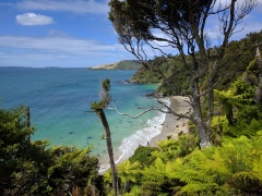 Maori Beach.